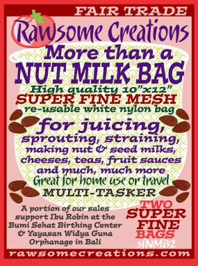 more-than-a-nut-milk-bag