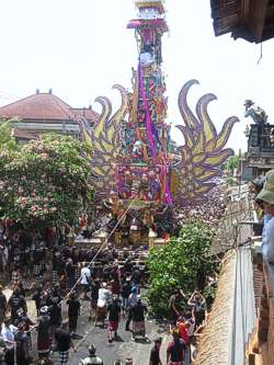 Cremation Tower and procession. Photo by Brenda Hinton, Bali, November 2013