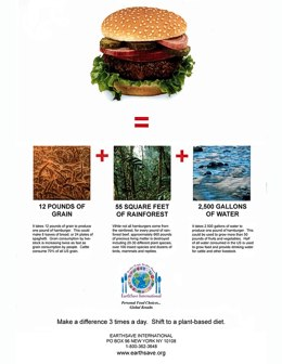 EarthSave Hamburger Poster, available at www.earthsave.org, shows the true cost of an hamburger.