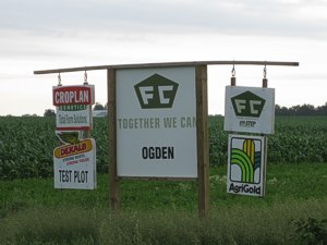 GE seed companies proliferate across the country.