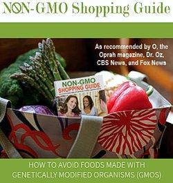 NON-GMO Shopping Guide -- click for the website