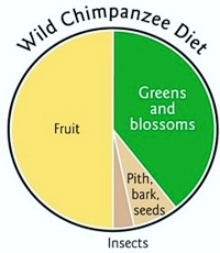 Wild Chimp Diet from The First Green Smoothie by Victoria Boutenko